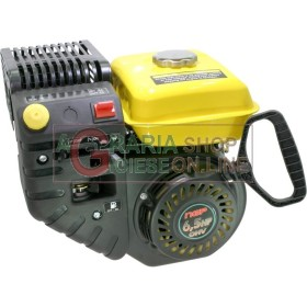 PETROL ENGINE, FOUR-STROKE VERTICAL FOR THE SNOW THROWER TO