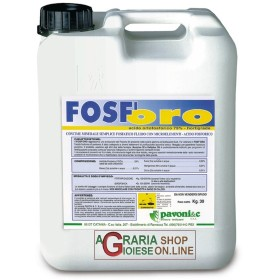 PAVONI FOSF-ORO KG. 30 ACIDO ORTOFOSFORICO 75