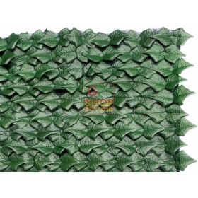 ARELLE HEDGE EVERGREEN IVY MT. 1X3