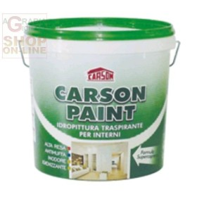 CARSON PAINT PAINTING SEMILAVABILE BREATHABLE SUPER OPAQUE LT.