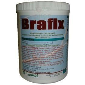 GOBBI BRAFIX MASTIC TO GRAFT HEALING, PROTECTIVE KG. 1