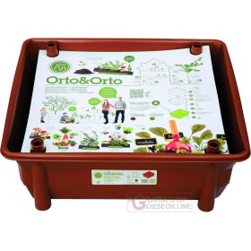 (MAJOR) NOVITAL TRAY FOR THE SEED-BED AND VEGETABLE GARDEN ON