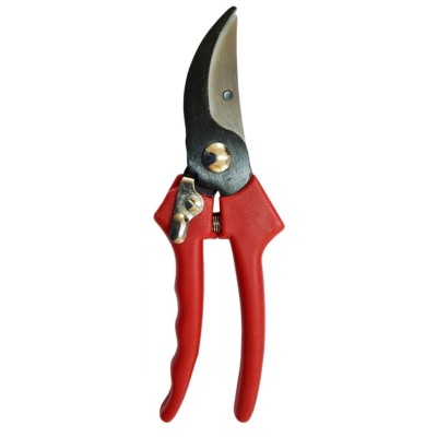 SCISSORS FOR PRUNING PAOLUCCI