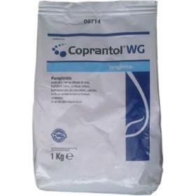 SYNGENTA COPRANTOL WG KG.1 OSSICLORURO DI RAME 32%