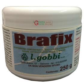 GOBBI BRAFIX MASTIC TO GRAFT HEALING, PROTECTIVE GR. 250