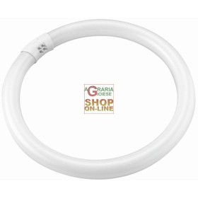 BLINKY NEON CIRCOLARE T9 BIANCA 40W-3000LM