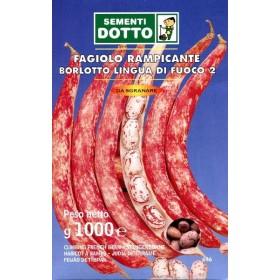 SEMI DI FAGIOLO BORLOTTO RAMPICANTE LINGUA DI FUOCO GR. 500