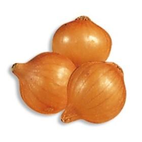 BULBS OF ONION STUTTGART 21/24 KG. 0,500