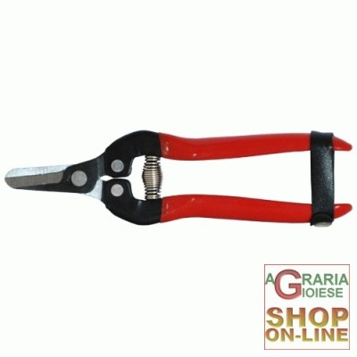 SCISSORS FOR PRUNING KUNDE