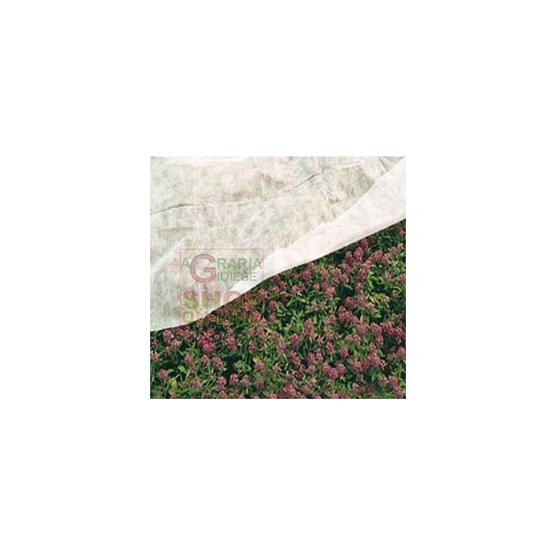 Telo antigelo tnt tessuto non tessuto 1 6 x 10 - Telo tessuto non tessuto giardino ...
