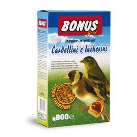MANGIME CARDELLINI SD5 GOLD GR. 800
