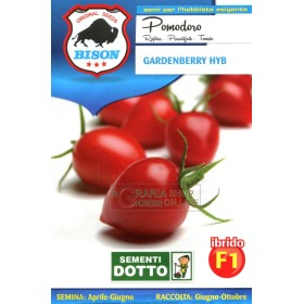 BISON SEMI DI POMODORO GARDENBERRY IBRIDO F1