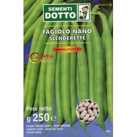 SEMI DI FAGIOLO NANO SLENDERETTE GR. 250