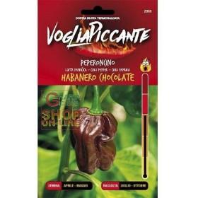 VOGLIA PICCANTE SEMI DI PEPERONCINO PICCANTE HABANERO CHOCOLATE