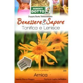 CONDUIT LES ENVELOPPES DES GRAINES DE L'ARNICA