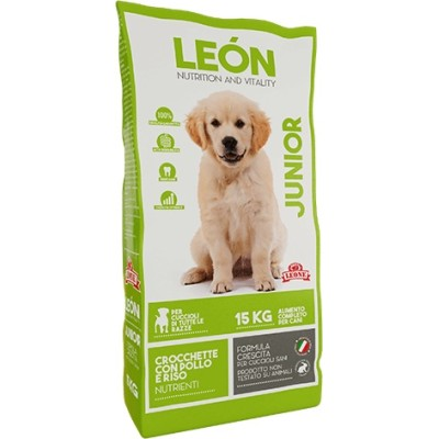 FEED FOR DOGS