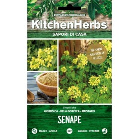 KITCHEN HERBS SEMI DI SENAPE